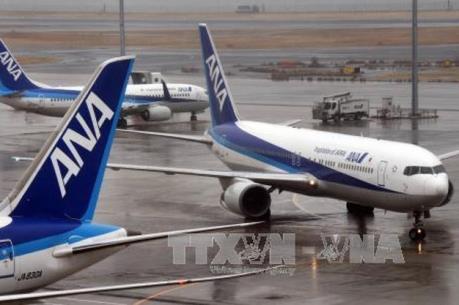 Nhật Bản: Hãng ANA hủy thêm hơn 300 chuyến bay nội địa