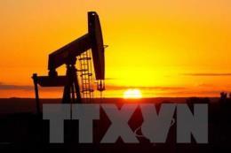 Giá dầu châu Á tiếp tục xu hướng giảm