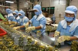 Vượt rào cản để rau quả Việt vươn xa