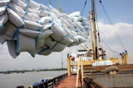 Xuất khẩu gạo có nhiều tín hiệu lạc quan