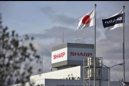 Sharp dự báo đạt lợi nhuận lần đầu tiên sau 5 năm