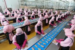 C.P. Việt Nam sẽ đầu tư dự án 100 triệu con gà/năm để xuất khẩu