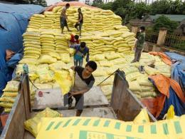 Cung ứng 3.713 nghìn tấn phân bón các loại trong 12 tháng
