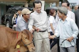 FLC trao tặng bê giống và sổ tiết kiệm cho người dân Bình Định