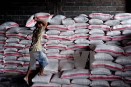 Vận chuyển hàng ngũ cốc đóng nguyên container từ Kazakhstan đến Việt Nam