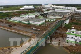 Mùi hôi tại kho chứa bùn ép của Nhà máy Giấy Lee&Man đã hạn chế nhiều