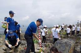 Trồng cây hoàn nguyên môi trường tại bãi thải than Chính Bắc Núi Béo, Quảng Ninh