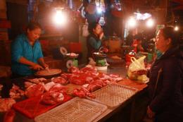 Thu mua lợn sữa, lợn thịt, giải cứu cho người chăn nuôi