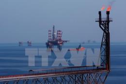 Trữ lượng dầu mỏ Trung Quốc tăng liên tục trong 5 năm qua