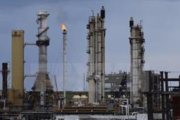 Tổng thư ký OPEC: Thị trường dầu mỏ thế giới sẽ cân bằng trong năm nay