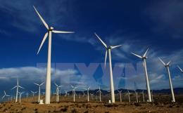 Doanh nghiệp Hàn Quốc mong muốn đầu tư vào năng lượng điện gió tại Bạc Liêu