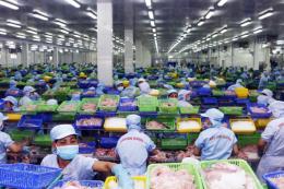 Xuất khẩu hàng hóa của Cần Thơ có xu hướng tăng mạnh
