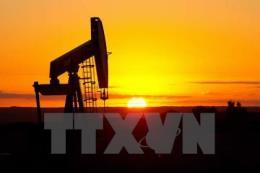 Yếu tố bão Harvey tiếp tục chi phối giá dầu châu Á