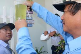 Phòng chống sốt xuất huyết tại Bình Thuận gặp nhiều khó khăn