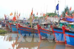 Bão số 10: Cảnh báo nguy cơ sạt lở các tuyến đê biển Nam Định