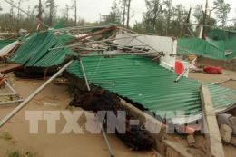 Bão số 10: Hai người bị thương vong cùng nhiều thiệt hại ở Nghệ An
