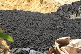 Phát hiện 2 doanh nghiệp đổ hàng chục tấn chất thải nguy hại ra môi trường