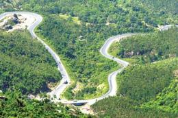Kiểm tra việc chuyển mục đích sử dụng rừng đặc dụng Đèo Cả