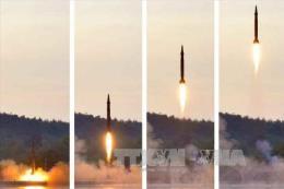Cơ quan giám sát hạt nhân nghiên cứu hoạt động địa chấn ở Triều Tiên
