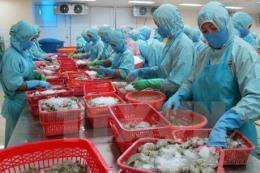 Triển vọng chế biến thủy sản xuất khẩu ở Cà Mau
