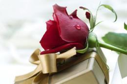 Lời chúc ngày Phụ nữ Việt Nam 20/10 dành tặng vợ ngọt ngào nhất