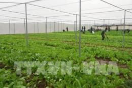 Việt Nam - Hoa kỳ hợp tác ứng dụng công nghệ thông tin trong nông nghiệp