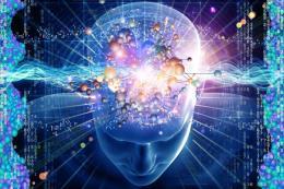 Nhà vật lý Stephen Hawking cảnh báo hiểm họa của trí tuệ nhân tạo