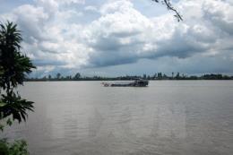 Thực hư thông tin lấp sông Tiền xây công viên trái cây