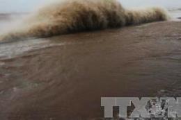 Triển khai Công điện của Thủ tướng Chính phủ ứng phó với bão số 14