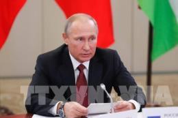 Tổng thống Nga điện đàm với lãnh đạo nhiều nước về Syria