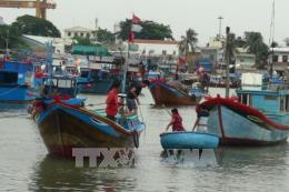Ngư dân Bình Thuận nỗ lực vươn khơi bám biển