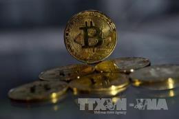 Đồng bitcoin tăng gần 100% từ mức đáy của năm nay
