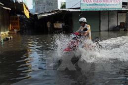Tối 2/1, áp thấp nhiệt đới vào Biển Đông, cảnh báo nguy cơ ngập lụt cao ở vùng trũng thấp