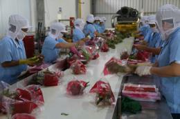 Xuất khẩu nông lâm thủy sản 2 tháng đầu năm tăng hơn 30%