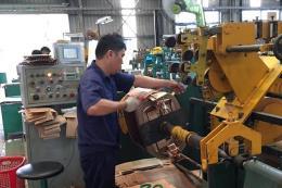 Công ty cổ phần Thiết bị điện Việt Nam đưa 266,8 triệu cổ phiếu lên HOSE