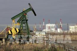 Giá dầu châu Á giảm do đồng USD mạnh lên