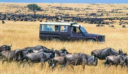 WB kêu gọi đầu tư phát triển du lịch khám phá thiên nhiên và động vật hoang dã
