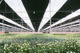 PAN Farm muốn tăng sở hữu Vinaseed lên hơn 80%