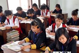 Gia Lai: Xem xét chấm dứt hợp đồng trên 1.400 giáo viên