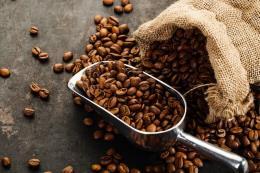 Giá cà phê tuần từ 16-21/4: Gặp khó ở ngưỡng kháng cự 1740-1750 USD/tấn