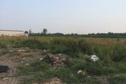 Đồng Nai đang có gần 1.000 ha đất công bị lấn chiếm, tranh chấp
