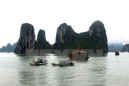 Quảng Ninh không chấp thuận dự án xây dựng nhà máy hóa chất ở gần vịnh Hạ Long