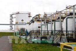 Nhân tố OPEC khiến giá dầu châu Á giảm