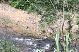 Vụ tai nạn xe khách nghiêm trọng trên đèo Lò Xo: Huy động lực lượng tập trung cứu người 