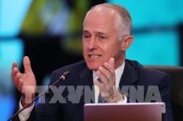 Australia: Tỷ lệ ủng hộ Thủ tướng M.Turnbull cao nhất trong hai năm qua