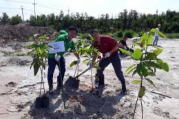 Nestlé Việt Nam thực hiện nhiều hoạt động giảm thiểu ô nhiễm môi trường
