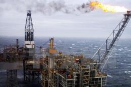 Giá dầu tăng trước thềm hội nghị OPEC