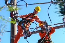 Điện lực miền Nam củng cố lưới điện trước mùa mưa bão