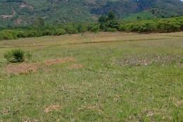 Không để lọt tội phạm trong vụ án liên quan đến đất đai ở xã Hoàn Trạch, huyện Bố Trạch