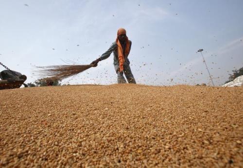 Venezuela kiểm soát chặt giá lương thực trong nước